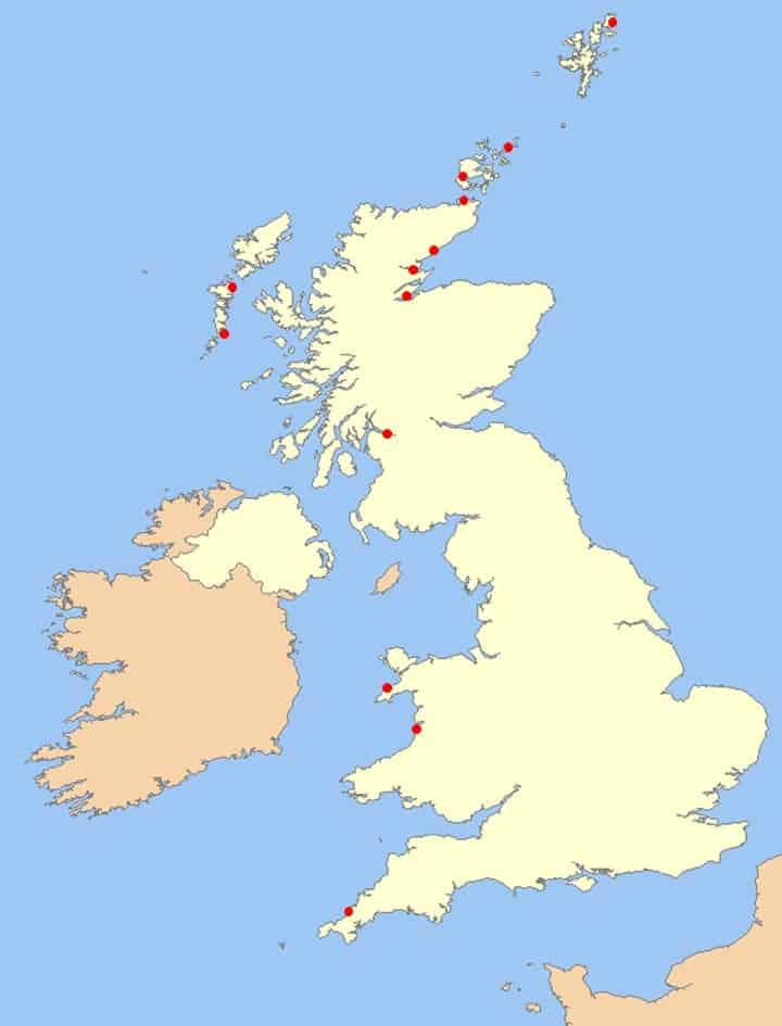 Risso's dolphin rescue map
